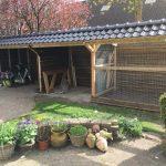 Overkapping en konijnenren Roden